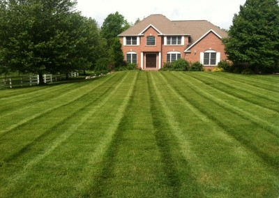 Lawn Maintenance for High End Homes